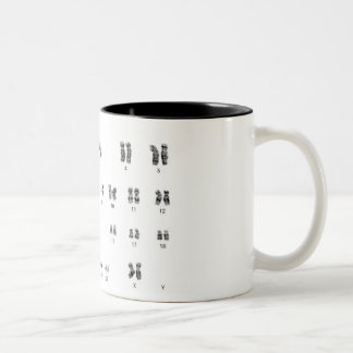 chic geek genetics xx female coffee mug