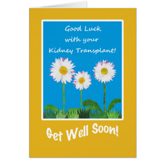 Chic Get Well Card, Kidney Transplant, Daisies Greeting Card