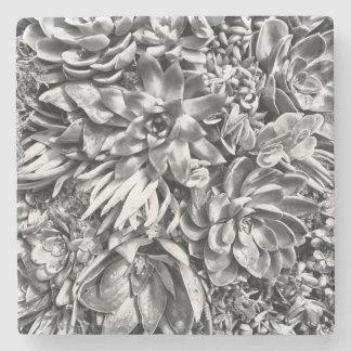 Chic Modern Black & White Succulent photo pattern Stone Beverage Coaster