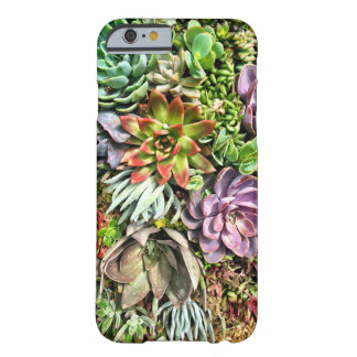 Chic Modern Colorful Succulent photo pattern Barely There iPhone 6 Case