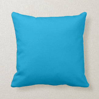 CHIC PILLOW_142 TURQUOISE SOLID CUSHION