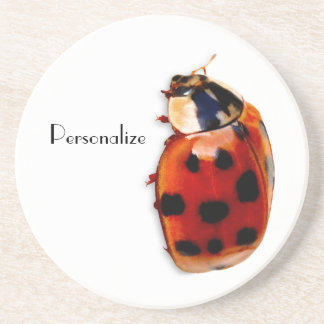 Chic Spotted Ladybug With Name Coaster