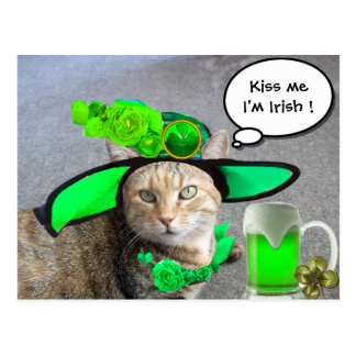 CHIC ST.PATRICK'S DAY CAT,GREEN ROSES,IRISH BEER POST CARD