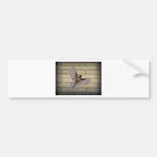 Chicadee in flight bumper stickers