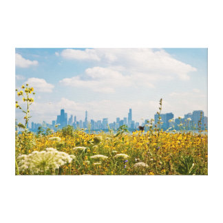Chicago as seen from Montrose Harbor's bird Canvas Print