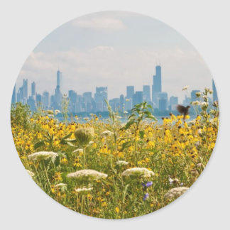 Chicago as seen from Montrose Harbor's bird Classic Round Sticker