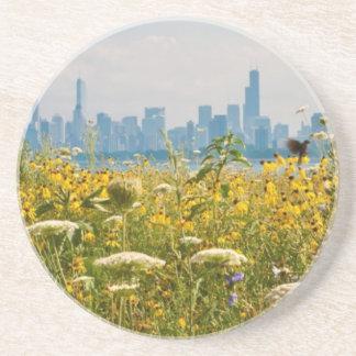 Chicago as seen from Montrose Harbor's bird Coaster