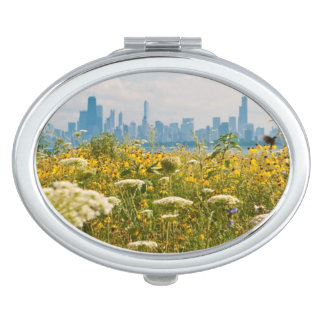Chicago as seen from Montrose Harbor's bird Compact Mirrors