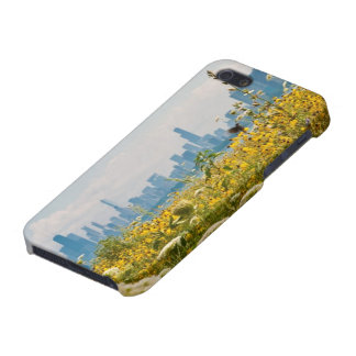 Chicago as seen from Montrose Harbor's bird iPhone 5 Case