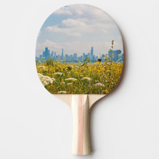 Chicago as seen from Montrose Harbor's bird Ping Pong Paddle
