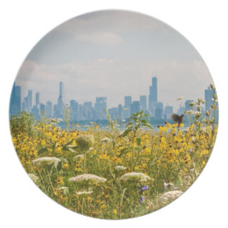Chicago as seen from Montrose Harbor's bird Plate