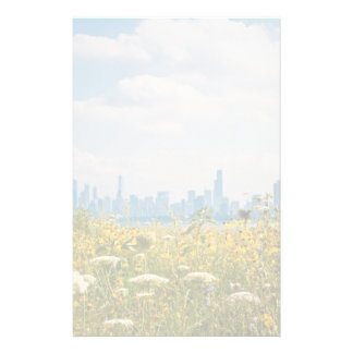 Chicago as seen from Montrose Harbor's bird Stationery