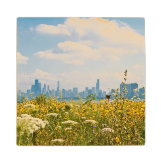 Chicago as seen from Montrose Harbor's bird Wood Coaster