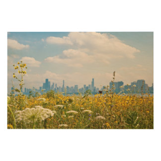 Chicago as seen from Montrose Harbor's bird Wood Wall Art