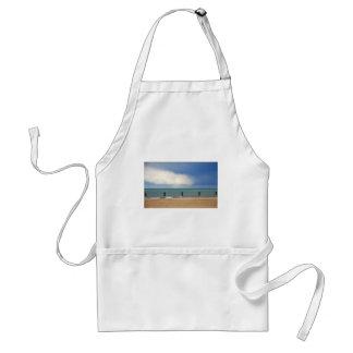 Chicago beach aprons