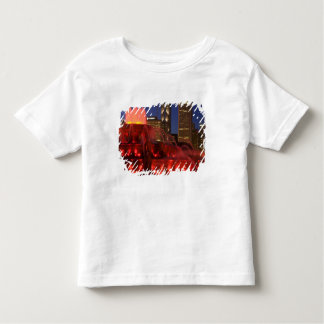 Chicago, Illinois, Buckingham Fountain Toddler T-Shirt