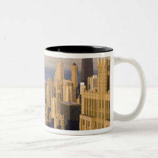 Chicago, Illinois, Skyline from the Sears Tower Mugs