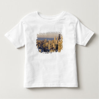 Chicago, Illinois, Skyline from the Sears Tower T Shirt