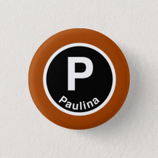Chicago L Paulina Brown Line 3 Cm Round Badge