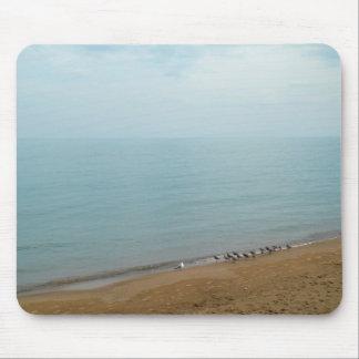 Chicago Lake Michigan Beach Photo Mousepad