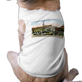 Chicago & Northwestern Railway, Des Moines, Iowa Sleeveless Dog Shirt