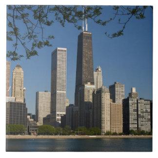 Chicago skyline and Lake Michigan, Lake Shore Tile