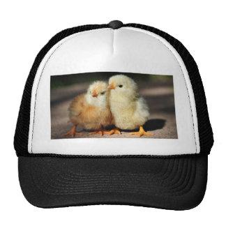 Chick Brotherhood Trucker Hat