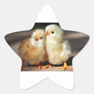 Chick Brotherhood Star Sticker