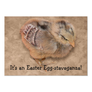 Chick - Fluffy Baby Chicken Easter Card