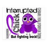 Chick Interrupted 3 Chiari Malformation
