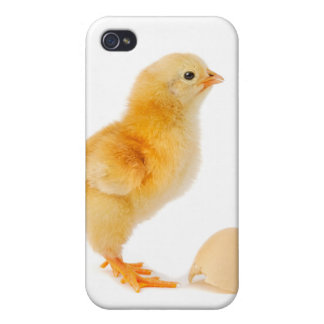 Chick Cover For iPhone 4