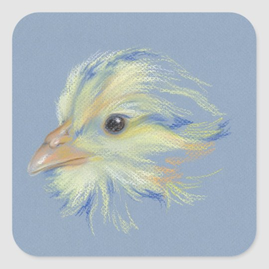 Chick Plymouth Barred Rock Square Sticker