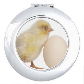 Chick with egg (2 days old) mirror for makeup
