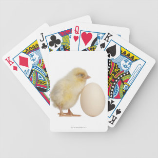 Chick with egg (2 days old) poker deck