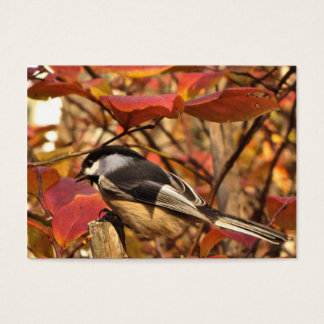 Chickadee Bird with Pink Autumn Foliage ATC Business Card