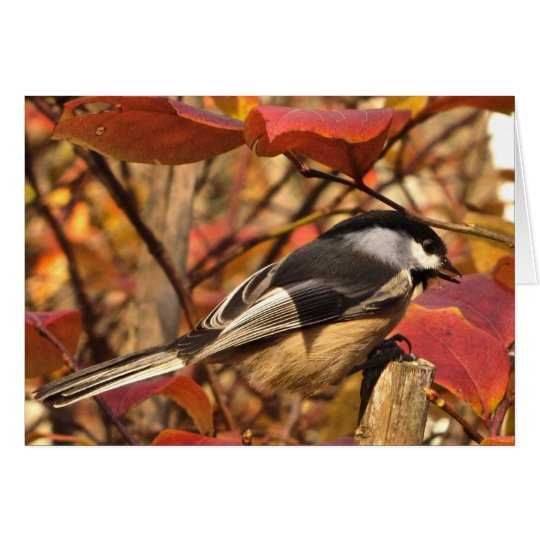 Chickadee Bird with Pink Autumn Leaves Birthday Card