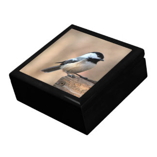 Chickadee in Golden Light Large Square Gift Box
