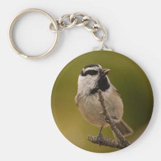 chickadee basic round button key ring