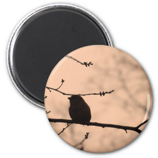 Chickadee on Branch in Twilight Silhouette Refrigerator Magnets