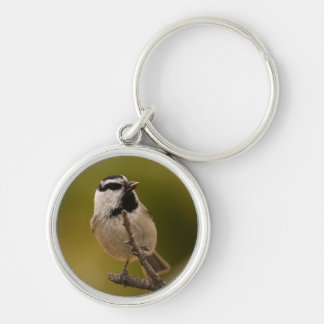 chickadee Silver-Colored round key ring