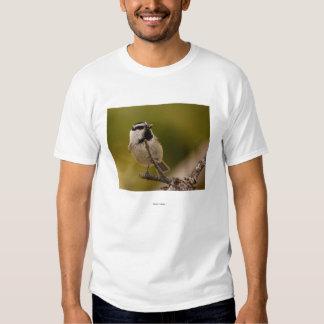 Chickadee Tshirts