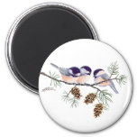 CHICKADEES & PINECONES by SHARON SHARPE Magnets