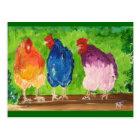 Chicken Chat Postcard