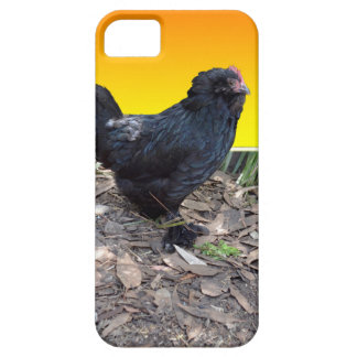 Chicken Dimensions iPhone SE + iPhone 5/5S Case