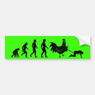 Chicken evolution bumper stickers