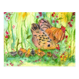 Chicken Hen Family Bird Watercolor Painting Postcard