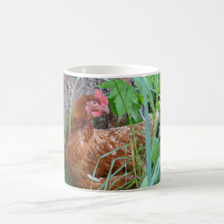 Chicken in the Grass Basic White Mug