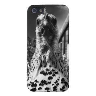 Chicken iPhone Case Cover For iPhone 5/5S