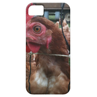 Chicken Is Watching You iPhone 5 Cases