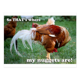 Chicken Nuggets - Rooster Postcard
